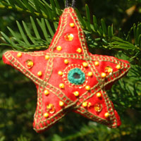Needlework star   