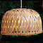 «Dome»